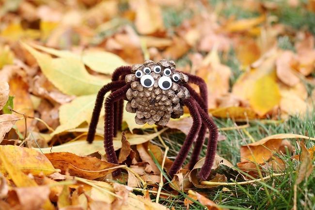 Паук из шишки на Хэллоуин - мастер-класс