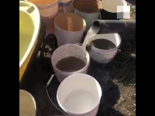 Жителям села в Челябинской области привезли питьевую воду в ассенизаторе