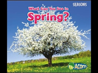 What can you see in Spring