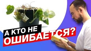 №49 Типичные ошибки новичков версия 2.0   Итоги конкурса на 3000 рублей от DzagiGrow