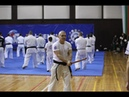 Warm up with swords by the Chairman of KWU International Professional League Shihan Ivo Kamenov