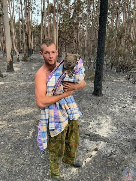 Австралия в огне. Погибло уже более миллиарда животных! Из-за сокрушительных лесных пожаров в Австралии, которые продолжаются с осени прошлого года, количество погибших животных превысило один