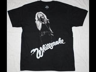 Randy - song of Whitesnake   Sweet Talker guitar party