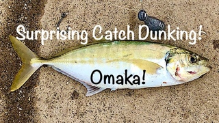 Surprising Catch Dunking a Crab!