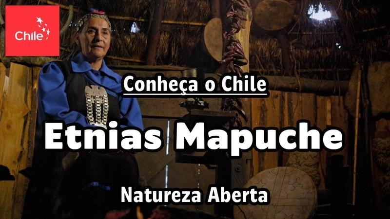 Conheça o Chile Etnias Mapuche - Natureza Aberta