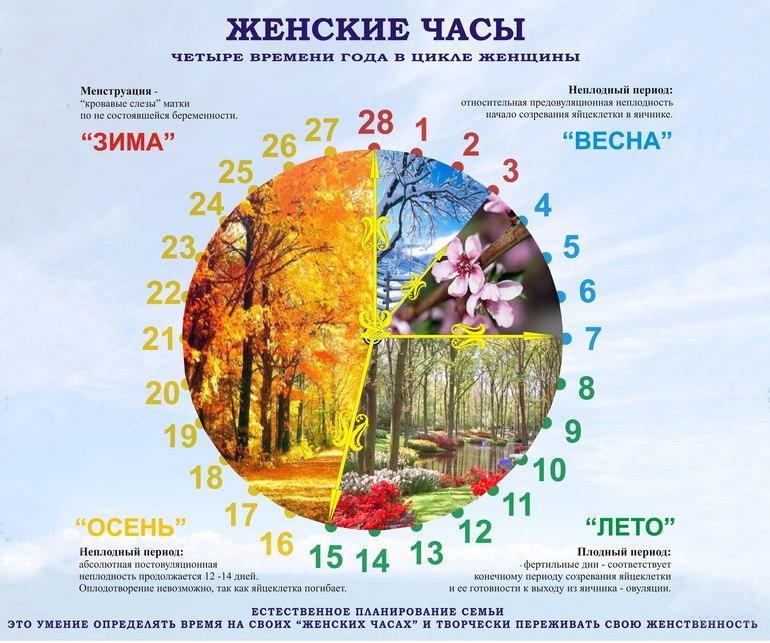 Афиша Новосибирск Обучающий курс СТМРП - ЖЕНСКИЕ ЧАСЫ