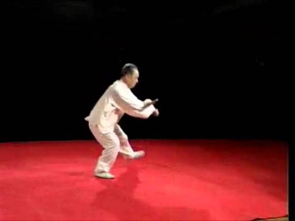 Yăn shŏu gōng chuí 掩手肱锤 14