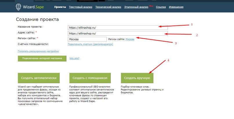 SAPE ввод данных по проекту