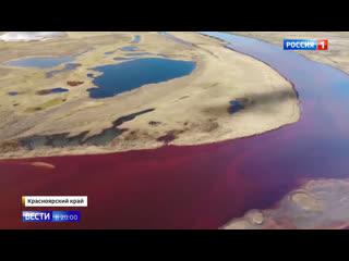 Путин распорядился расследовать, кто виноват в экологической катастрофе в Норильске