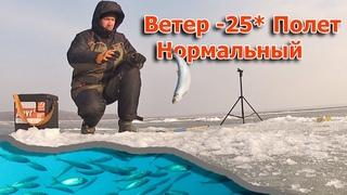 Экстремальная рыбалка в - 25 при сильном ветре! Атакует Камчатский зубарь и алюторская селедка!