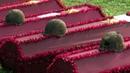 ВКалужской области отдали дань памяти красноармейцам, погибшим вгоды Великой Отечественной войны. Новости. Первый канал