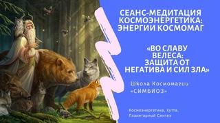 Медитация Энергии Древних Славян. Световой Канал «ВЕЛЕС».