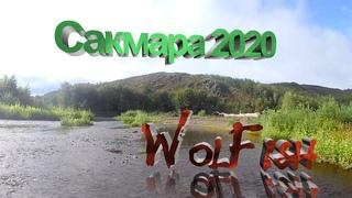 Сплав по реке Сакмара. Август 2020. Ловля щуки на баззбейт WolFish