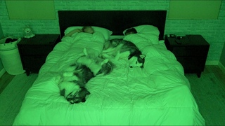 What Sleeping With Two Snuggly Huskies Is Like..