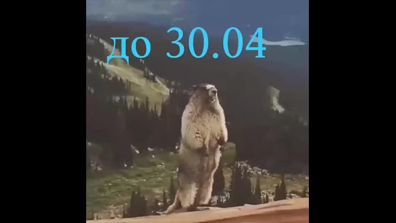 Video c06438c6ddc0dfd96e50e360b06a6d76