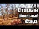 ПОИСК МОНЕТ В СТАРОМ ШКОЛЬНОМ САДУ..!!