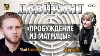 ЛАБИРИНТ | Пробуждение из матрицы | Джули По & Vlad Freedom