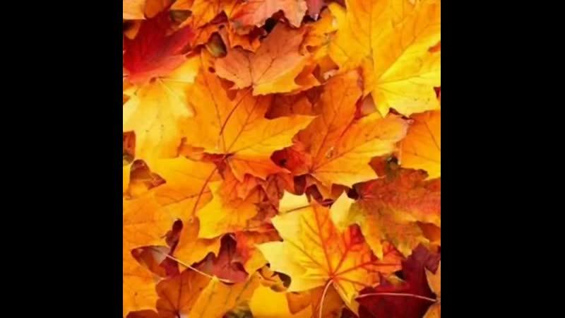 Шалунья осень