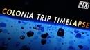 Colonia Carener ~22000 L y trip Elite Dangerous timelapse Из Колонии в пузырь за 5 мин