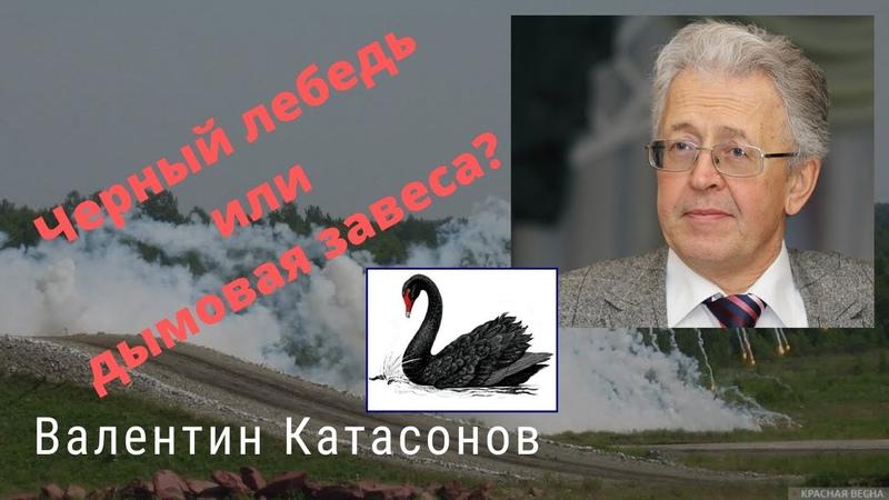 Валентин Катасонов Черный лебедь или дымовая завеса