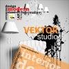 VEKTOR STUDIO Дизайн интерьера в Липецке vs48.ru