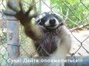 Фотоальбом Алексея Микитюка