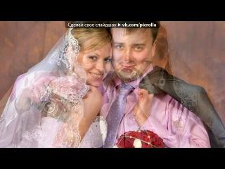 наш свадебный альбом под музыку Летняя песенка))обожаю ее  - Dj Leonid Rudenko-Destination. Picrolla