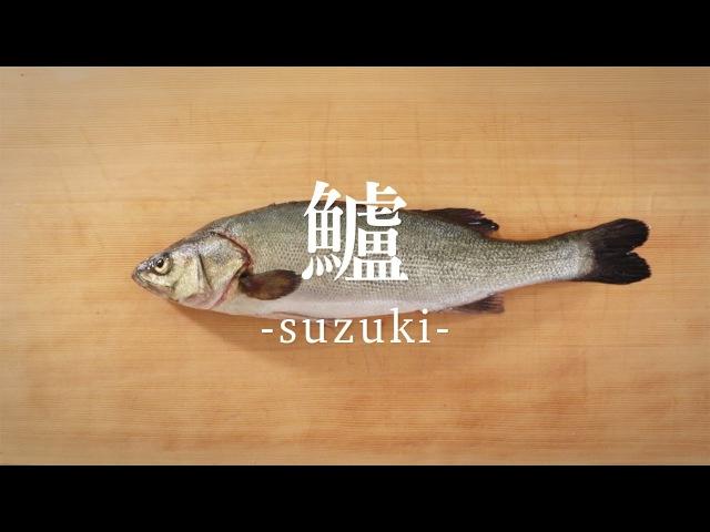 鱸(すずき)のさばき方 - How to filet Japanese Seaperch -|日本さばけるプロジェクト