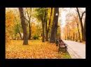 Michael Warm - Warm Autumn
