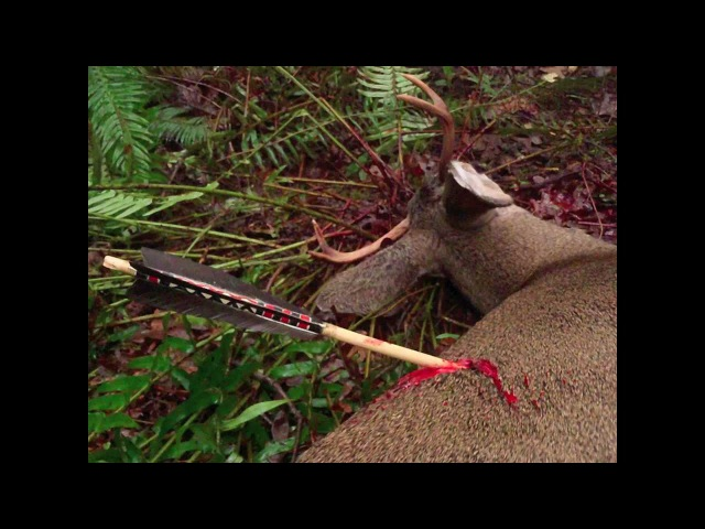 Primitive Archery Hunting for Deer. Otzi Arrow. Ishi Arrow. Traditional Bowhunting