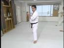 Shokei Matsui lessons kyokushin karate (2 4)