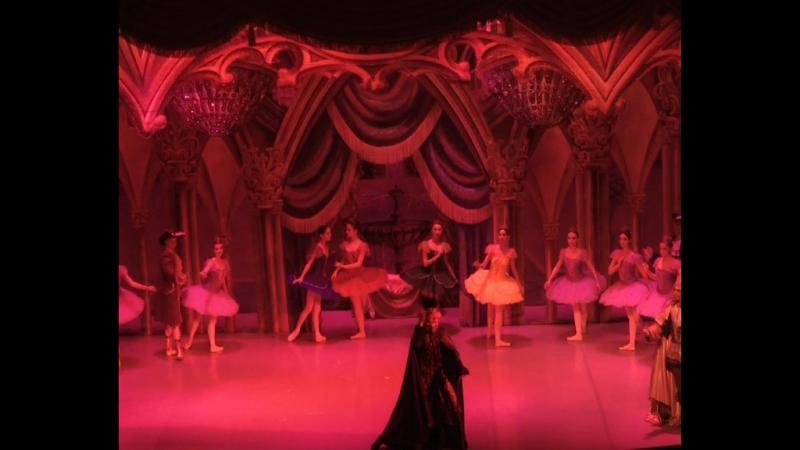 На сцене Дома Культуры Протон состоялась балетная постановка Спящая красавица