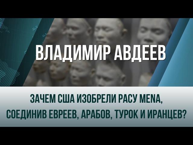 Владимир Авдеев. Зачем США изобрели расу MENA, соединив евреев, арабов, турок и иранцев