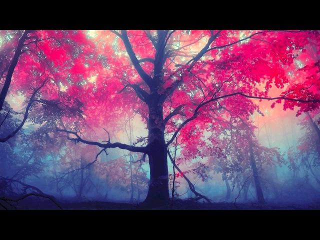 Sorrow Dreamstone feat CoMa