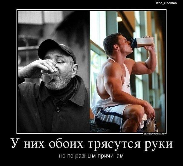 Фото №379124329 со страницы Богдана Игнатюка
