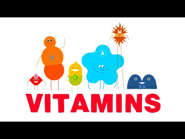 How do vitamins work - Ginnie Trinh Nguyen