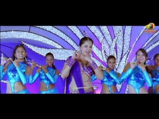 Nagarjuna damarukam full songs hd kanyakumari song anushka dsp youtube