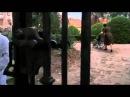 Две жизни полковника Рыбкиной Военные фильмы