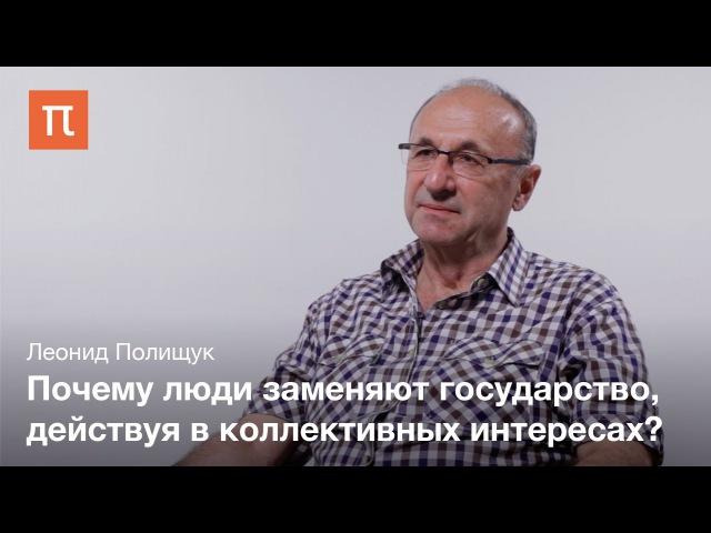Разделение труда между государством и обществом Леонид Полищук