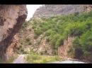Bayati Shiraz Tacir