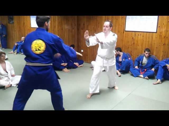 Realni Aikido - Polaganje za 5. Kyu, žuti pojas (TEHNIKE)