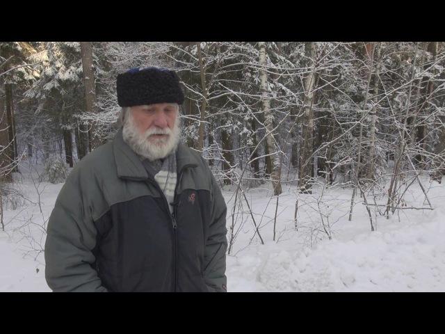 Чеурин Г.С. Зима 2017.
