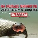Фотоальбом Амира Амирова