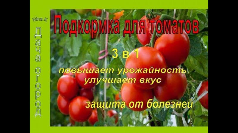 СУПЕР ПОДКОРМКА ТОМАТОВ 3 в 1 ВО ВРЕМЯ ЦВЕТЕНИЯ для увеличения урожая