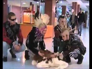 Пурген - В защиту животных (2010)
