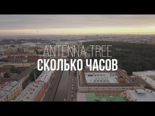 ANTENNA TREE - Сколько Часов (lyrics video)