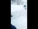 німецька мокра моржі