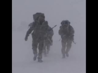 Спн рф | anti terror forces | atf