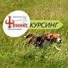КУРСИНГ-> Рязань->Забеги собак в КЦ Феникс. Офиц
