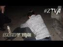 ZTVA x 2017 year
